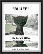 Bluff by Gerard Zitta