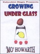 Mo Howarth's Growing Under Glass by Aldo Colombini
