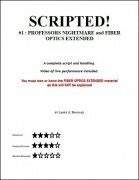Scripted #1 by Larry Brodahl