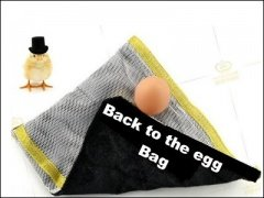 Which Came First: The Chicken or the Egg Bag? by Michael Lyth