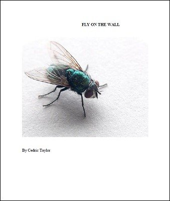Fly On The Wall by Cedric Taylor